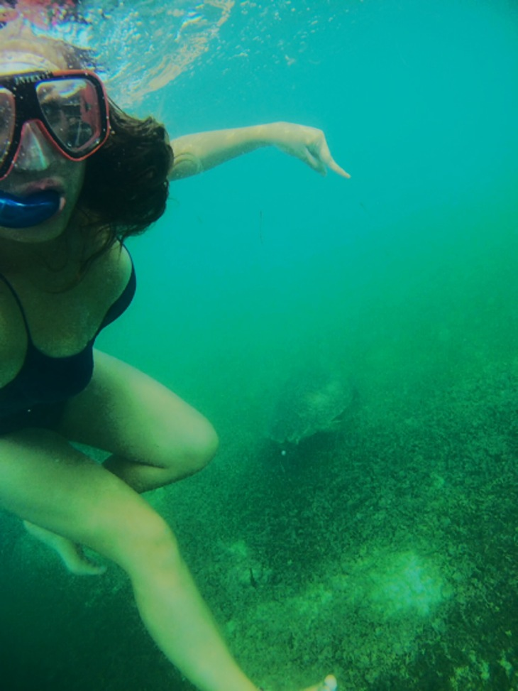 akumal snorkel con tortuga, leve fail.jpeg