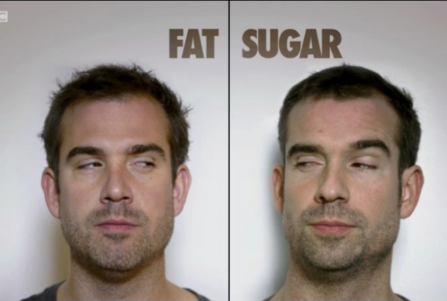 wp-sugar-vs-fat-2